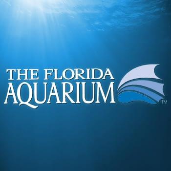 FL Acquarium
